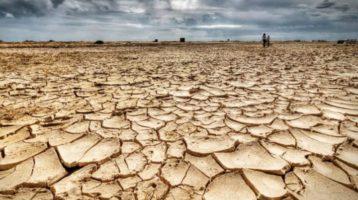 Giornata dell'Ambiente, ISPRA: In Italia cala del 17,5% la produzione di CO2