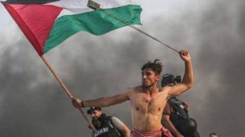 Palestina: il 29 novembre ricordati i 72 anni dalla Risoluzione ONU violata