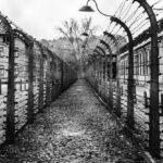 Auschwitz-campi-sorveglianza-massa
